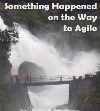 Something Happened on the Way to Agile